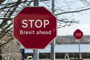 Cross-border survey reveals Brexit uncertainty among project managers